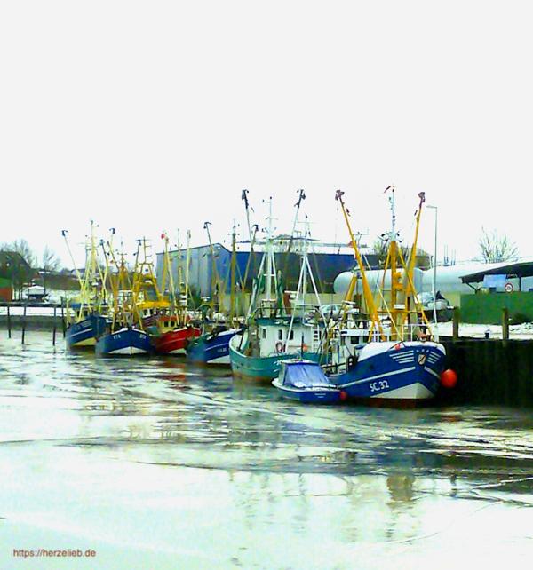 Krabben in Husum kauft man am Besten am Kutter im Hafen.