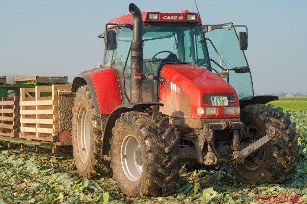 Ohne Traktor geht nichts in der Kohlernte. Er zieht den Erntewagen.