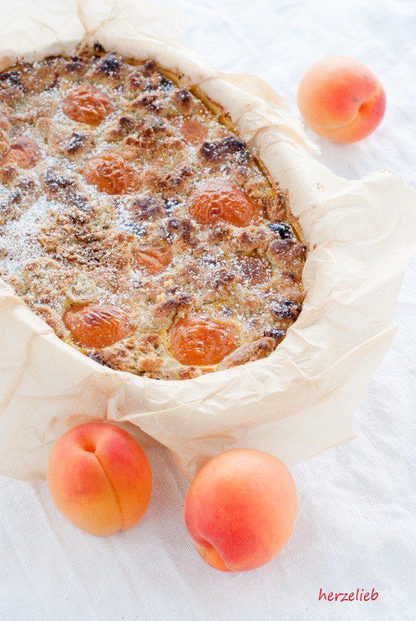 Aprikosenkuchen frisch aus dem Backofen