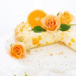 Omas Mandarinen Schmand Kuchen Rezept