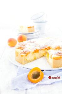 Aprikosen Quarkkuchen von herzelieb aus der Springform angeschnitten