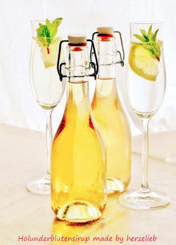 Holunderblütensirup selbstgemacht Rezept herzelieb