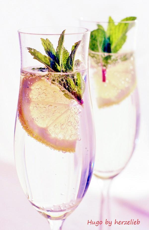 Dieser selbsgemachte Holunderblütensirup passt perfekt zum Sekt, Prosecco oder Mineralwasser!