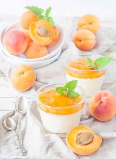 Rezept für eine Panna Cotta und ein Aprikosenmus