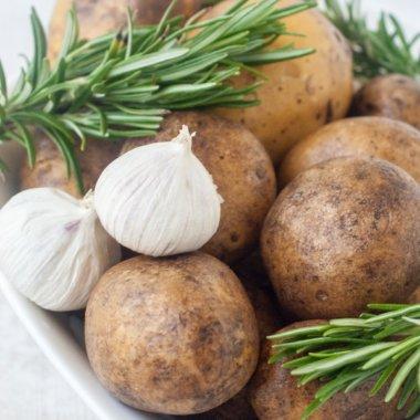 Bei diesem Rezept für Rosmarinkartoffeln braucht man Rosmarin, Knoblauch, Kartoffeln und ein gutes Olivenöl